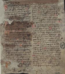 [Cronica Wislicensis 1079-1445]