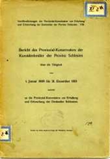 Bericht des Provinzial-Konservators der Kunstdenkmäler der Provinz Schlesien über die Tätigkeit vom 1. Januar 1909 bis 31. Dezember 1910
